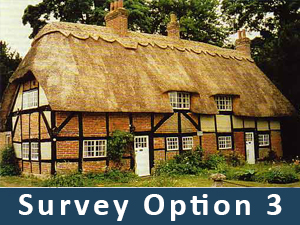 damp-survey-option-3