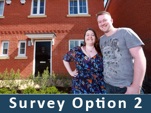 damp-survey-options-2